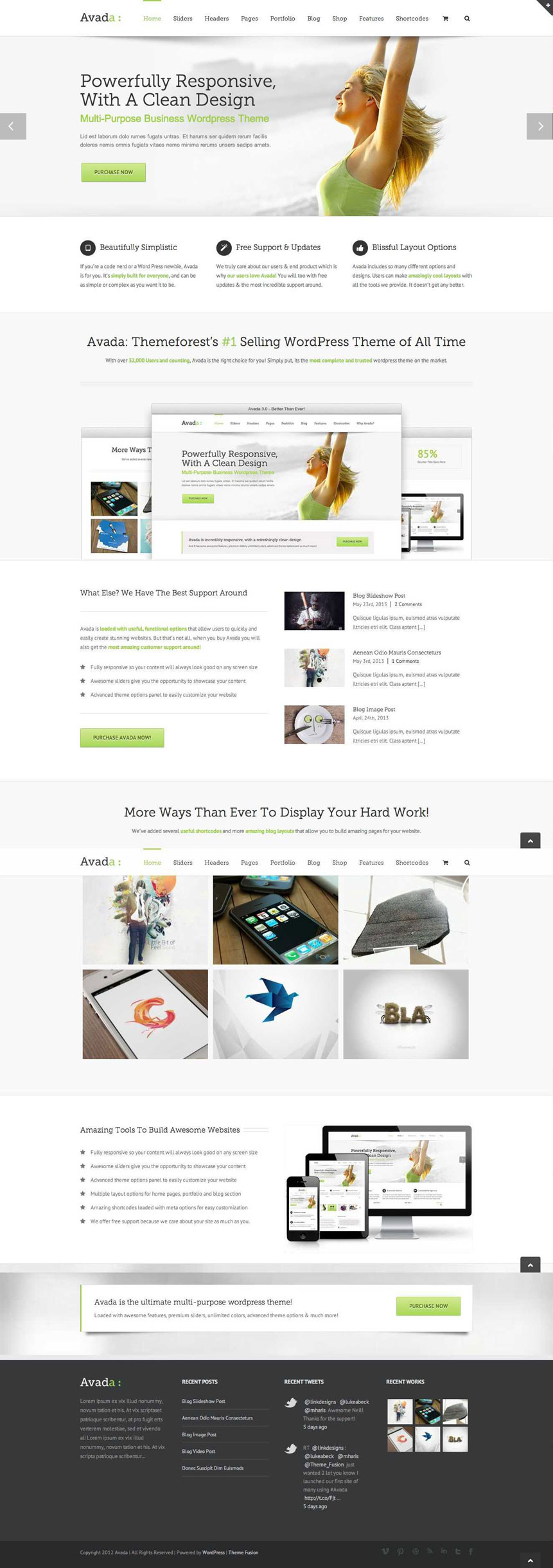 Most Popular WP Portfolio Theme - Best Selling