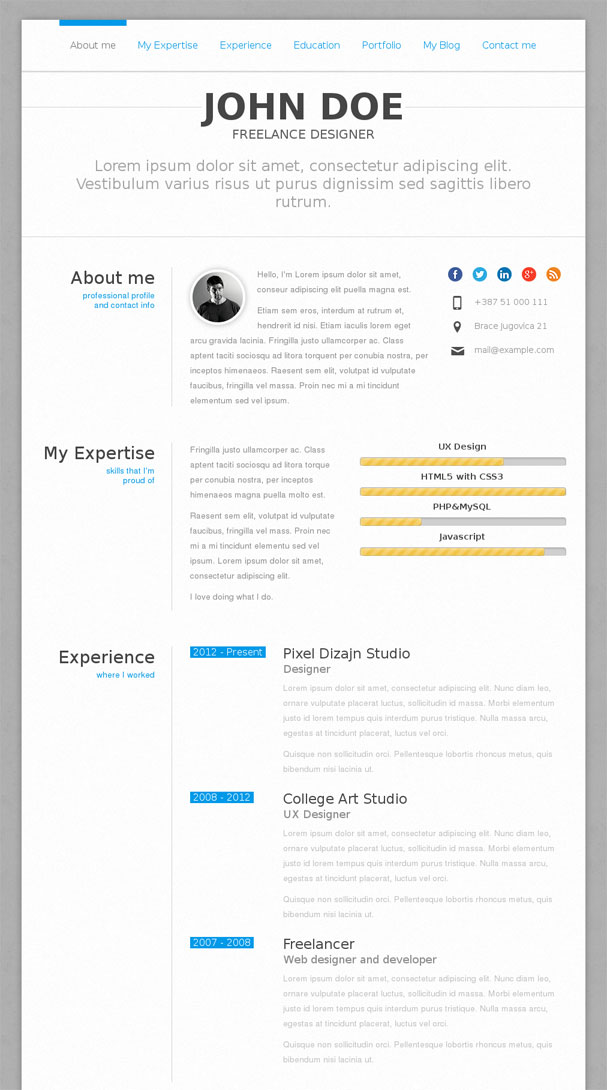 PerfectCV wordpress theme