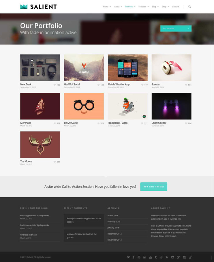 Salient WP Theme Portfolio Layout
