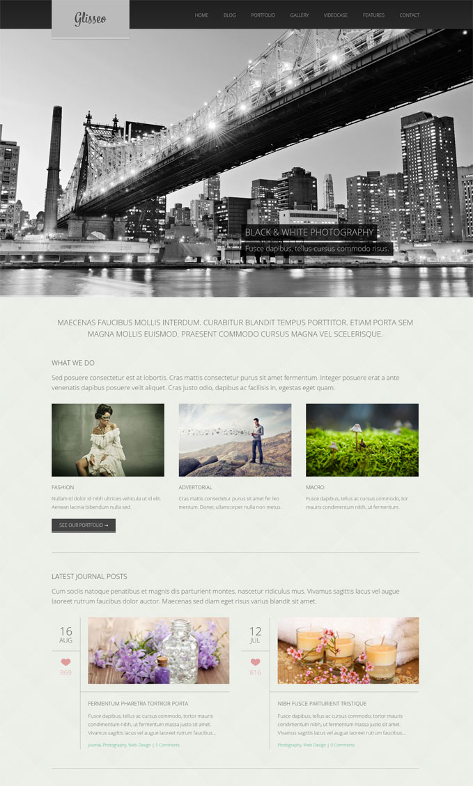 glisseo wordpress theme
