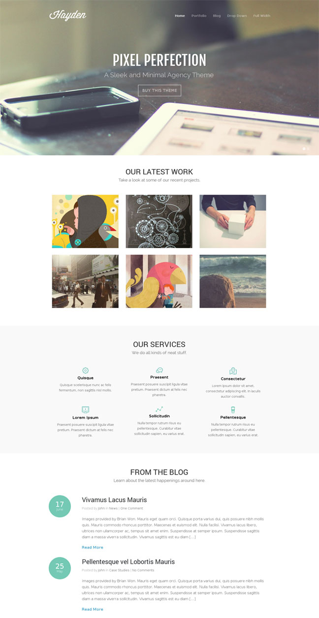 Hayden WordPress Portfolio Themes for Agencies