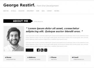 Resume wordpress theme wp