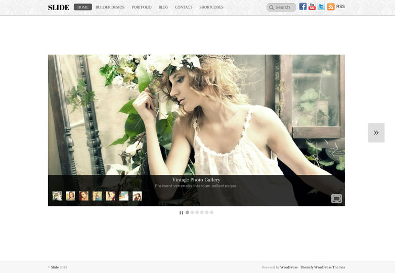 Slide WordPress Theme Hompage View