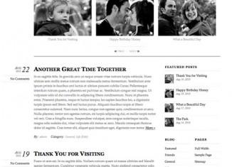 thememin wordpress theme themify
