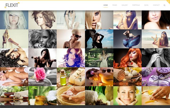 FlexIt Photography WordPress Themes
