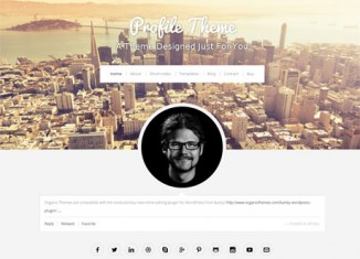 Profile WordPress Theme Preview