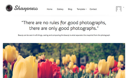Sharpness WordPress Photography Theme by ColorLabs