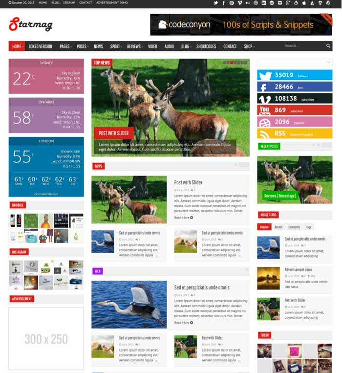 StarMag WordPress Theme