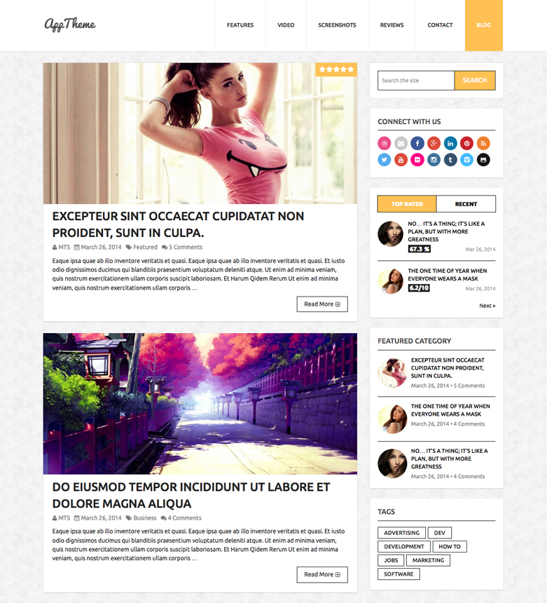 AppTheme WordPress Theme Blog